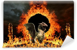 Vinylová Fototapeta Dragon u bran pekla, v