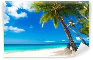 Vinylová Fototapeta Dream scénu. Krásné palmy na pláži s bílým pískem. Letní n