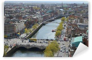 Vinylová Fototapeta Dublin City Scape
