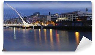 Vinylová Fototapeta Dublin most a řeka Lifey