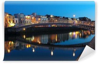 Vinylová Fototapeta Dublin noční scéna