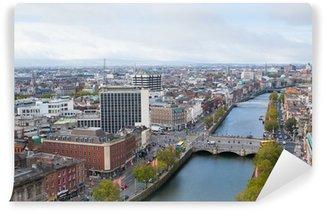 Vinylová Fototapeta Dublin panorama