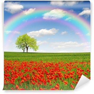 Vinylová Fototapeta Duha nad jarní krajinou s červeným mákem