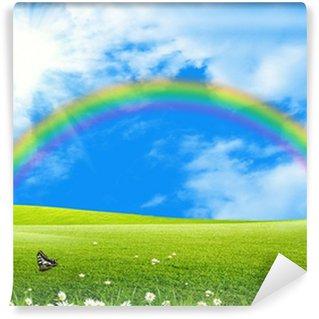 Vinylová Fototapeta Duha nad zelenou mýtině modrá obloha a slunce