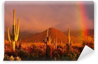 Vinylová Fototapeta Duha při západu slunce v národním parku Saguaro, Arizona, USA