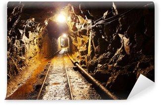 Vinylová Fototapeta Důl tunel s cestou