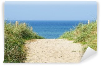 Vinylová Fototapeta Düne am Meer - Dune v oceánu