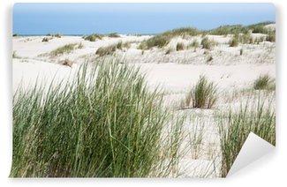 Vinylová Fototapeta Dune Grass před dunách na ostrově Norderney