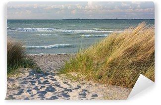 Vinylová Fototapeta Dünenlandschaft am Strand der Ostsee bei Heiligenhafen
