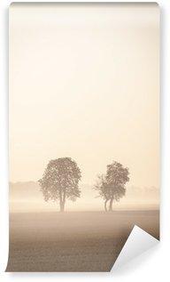 Vinylová Fototapeta Dva lonley stromy v mlze