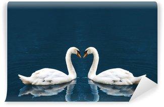 Vinylová Fototapeta Dvě bílé labutě
