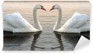 Vinylová Fototapeta Dvě labutě na západ slunce