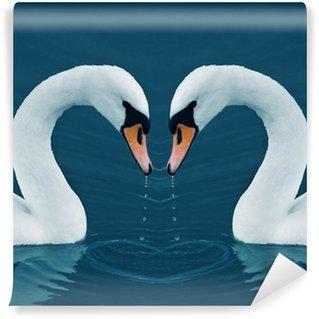 Vinylová Fototapeta Dvě labutě v jezeře ranní klid - Valentine obraz srdcem