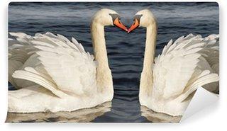 Vinylová Fototapeta Dvě labutě.