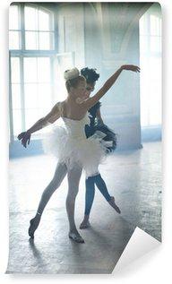 Vinylová Fototapeta Dvě mladé baletní labutě během tance