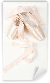 Vinylová Fototapeta Dvojice elegantních růžové baletní obuvi