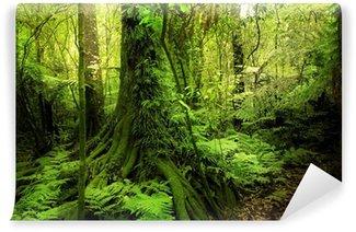 Fototapeta Winylowa Dżungla