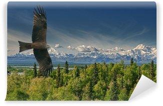 Vinylová Fototapeta Eagle létání na Alaska hory pozadí