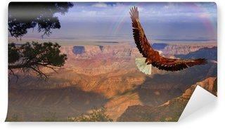 Vinylová Fototapeta Eagle má letu nad Grand Canyon USA