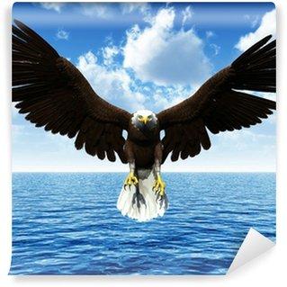 Vinylová Fototapeta Eagle přistání na moři