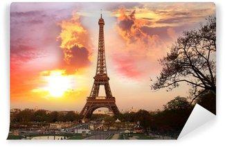 Vinylová Fototapeta Eiffelova věž s parkem v Paříži, Francie