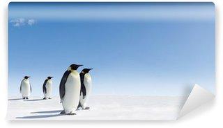 Vinylová Fototapeta Emperor Penguins v Antarktidě
