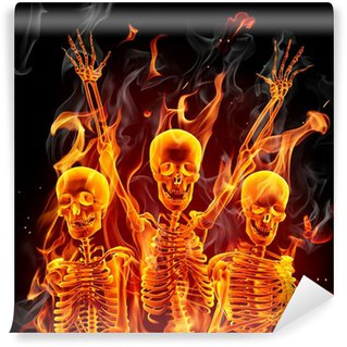 Vinylová Fototapeta Fire kostry