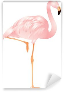 Vinylová Fototapeta Flamingo vektoru