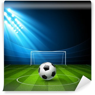 Vinylová Fototapeta Football Arena s fotbalovým míčem. Vector