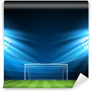 Vinylová Fototapeta Football Arena. Vector