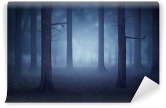 Vinylová Fototapeta Forest se spoustou stromů a mlhy