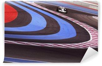 Vinylová Fototapeta Formule 1 2006