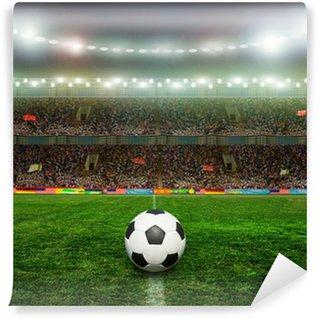 Vinylová Fototapeta Fotbal bal.football,