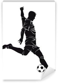 Vinylová Fototapeta Fotbal (fotbal), hráč s míčem
