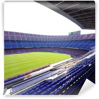 Vinylová Fototapeta Fotbal fotbalový stadion