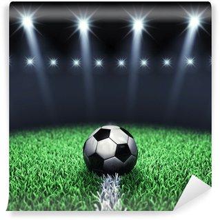 Vinylová Fototapeta Fotbalový aréna a míč s reflektory, Fotbalové hřiště