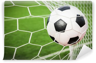 Vinylová Fototapeta Fotbalový míč do branky