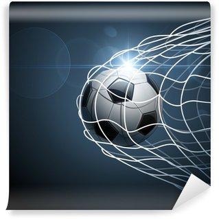 Vinylová Fototapeta Fotbalový míč v brance. Vector