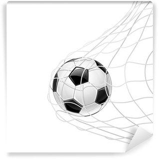 Vinylová Fototapeta Fotbalový míč v sítě izolované. Vector