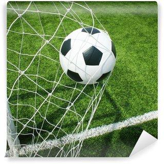 Vinylová Fototapeta Fotbalový stadion fotbalové hřiště tráva linka koule na pozadí textury