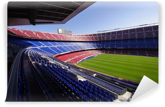 Vinylová Fototapeta Futbal stadion