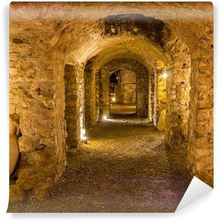 Vinylová Fototapeta Gallo-Roman horreum v Narbonne - Francie