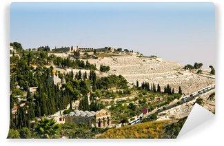 Vinylová Fototapeta Getsemane, a církev ze všech národů v Jeruzalémě