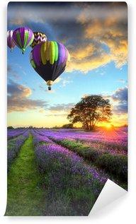 Fototapeta Vinylowa Gorące powietrze balony latające nad lawendy słońca krajobrazu