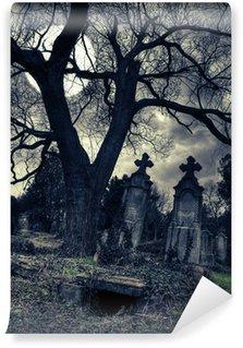 Vinylová Fototapeta Gothic scény s otevřenou hrobkou