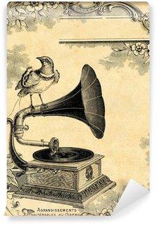 Fototapeta Winylowa Gramofon 1900