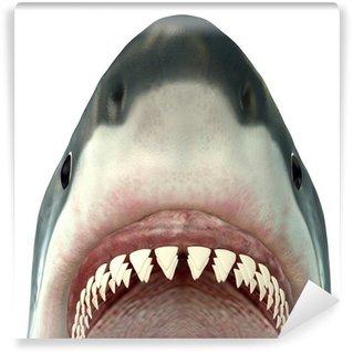 Fototapeta Vinylowa Great White Shark Jaws