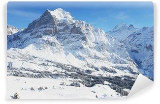 Vinylová Fototapeta Grindelwald, zimní krajina, Švýcarské Alpy