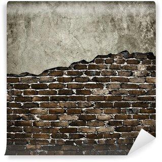 Vinylová Fototapeta Grunge zeď