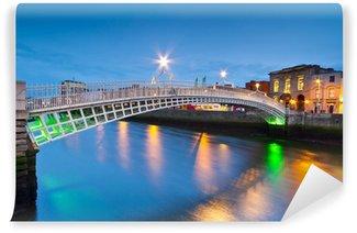 Vinylová Fototapeta Ha'penny most v Dublinu v noci, Irsko